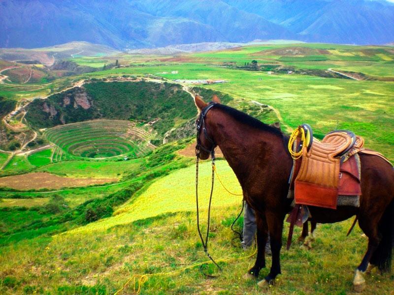 horseback-cusco-view
